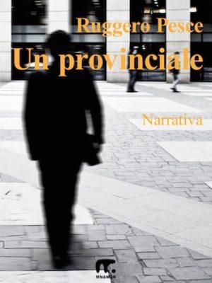 Romanzo di formazione di un uomo di provincia: un uomo cammina per strada