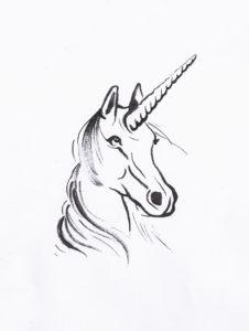 testa di cavallo con corno